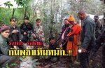 คลิปล่า7กัมพูชา..!!ลักลอบตัดไม้พยุง แต่ไปไม่รอดโดนรวบก่อนลำเรียงออกจากไทย