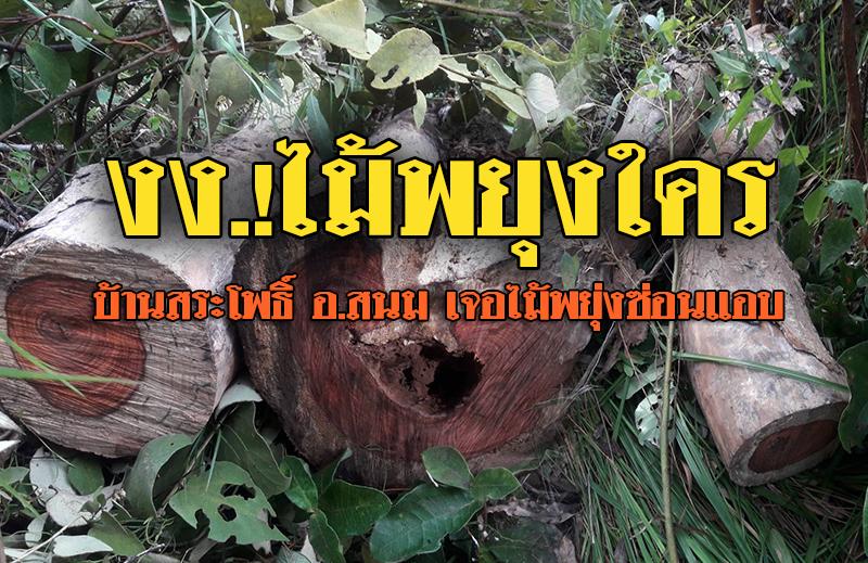 ถึงกับ งง..!! แก๊งลักลอบตัดไม้พยุง ทำเนียนรถเสีย ก่อนเผ่นหนี มารู้อีกทีเจอไม้พยุงแอบซ่อนข้างป่า