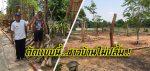 ชาวบ้านไม่ปลื้ม ผอ.มารับตำแหน่ง 4 เดือน ตัดต้นไม้ในโรงเรียนโล่งเตียน (คลิป)